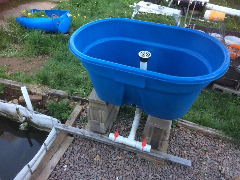730L Livestock tank on cinder blocks.  50mm SCH40 PVC pipe for stand pipe and valves. The new aquaponics fish tank.